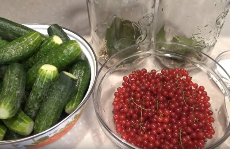 рецепт маринованных огурцов с красной смородиной без уксуса