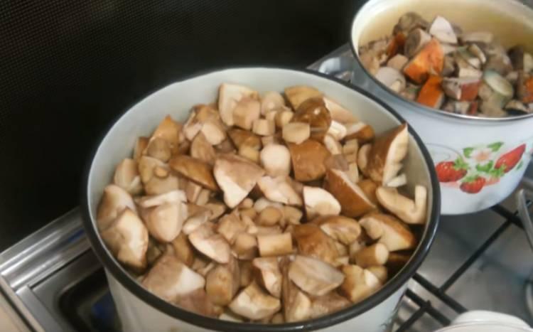 белые грибы вареные