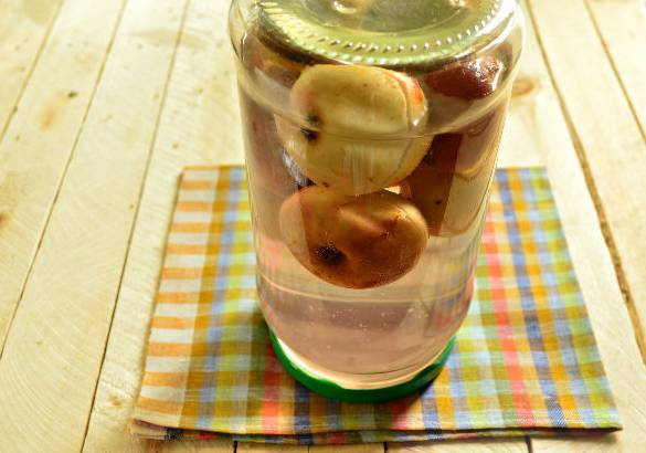 Компот ассорти из груш, слив и яблок