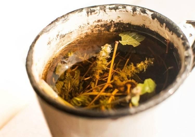 полоскание травами при воспалении десен