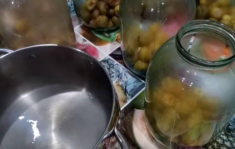 грушевый компот без стерилизации