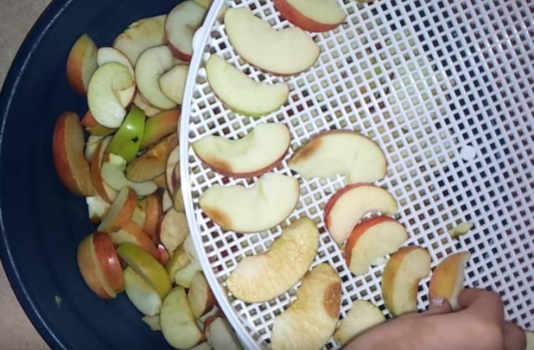 сушеные яблоки в электросушилке подготовка