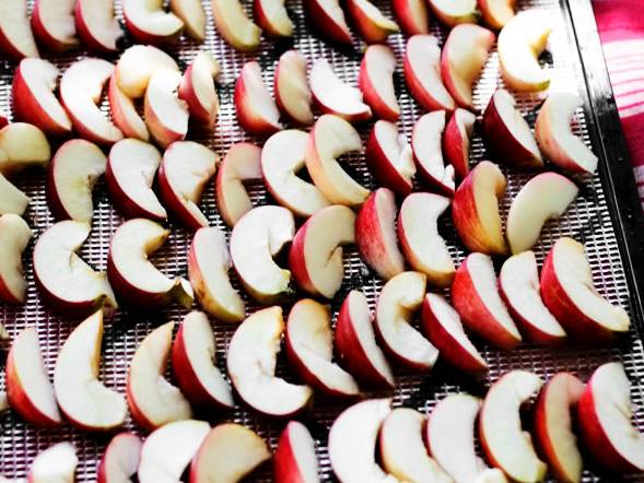 яблоки сушение в электрической духовке на противне