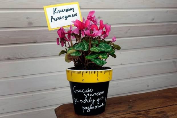 цветы классному руководителю
