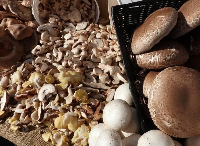 как сушить грибы порезанные