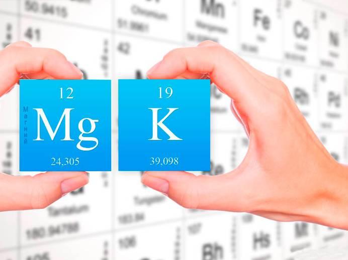 микроэлементы калий и магний