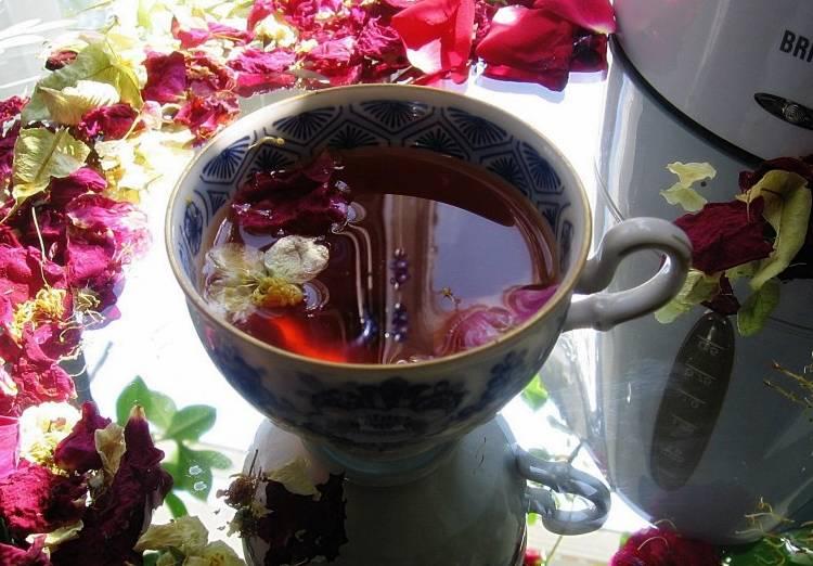 шиповник в чашке