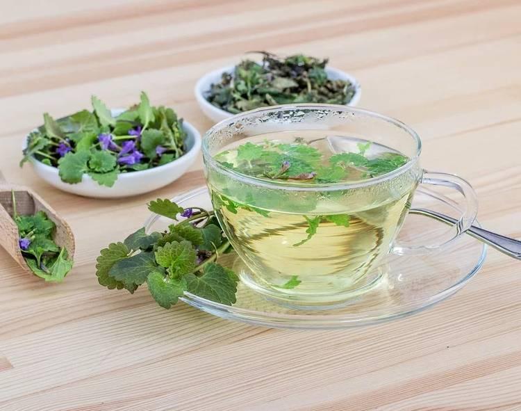 чай из трав мята мелисса