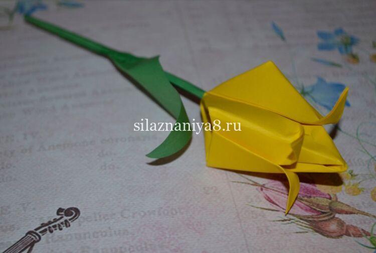 Как сложить тюльпан из бумаги оригами: поэтапно для начинающих легкая и простая схема