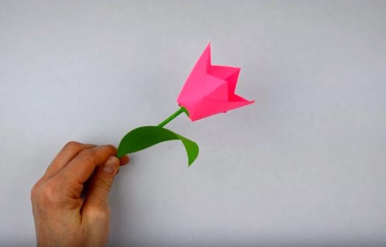 тюльпан из цветной бумаги