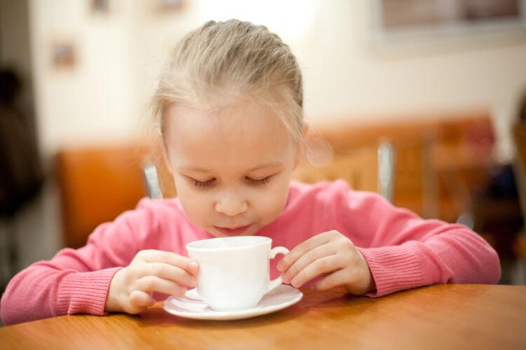 чай из почек сосны
