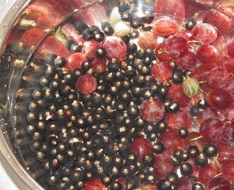 Варенье из крыжовника и черной смородины