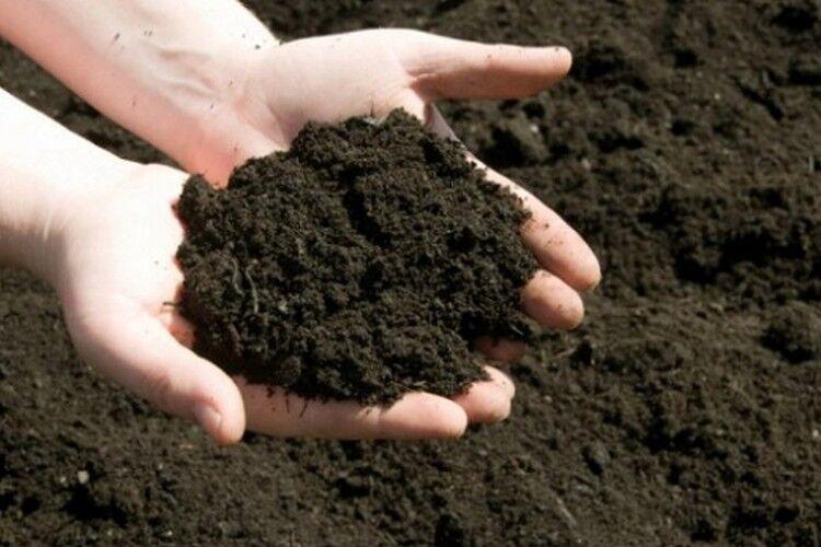 земля почва