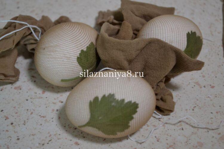 как окрасить яйца в луковой шелухе