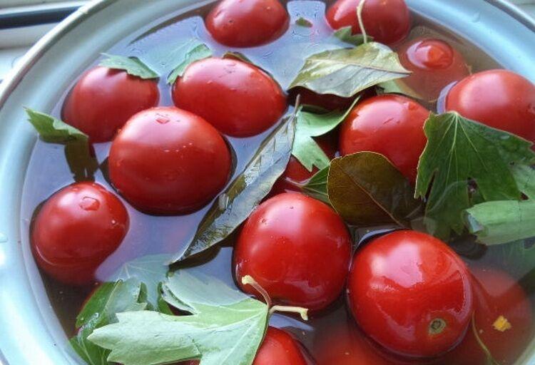 соленые помидоры в кастрюле