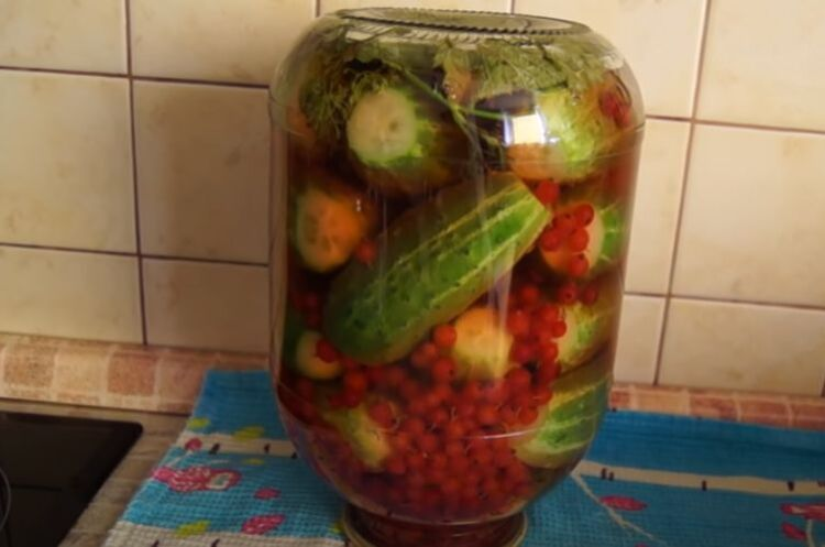 Самый вкусный рецепт огурцов с красной смородиной на 3 литровую банку