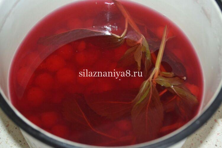 как варить компот из вишни в кастрюле из свежих ягод