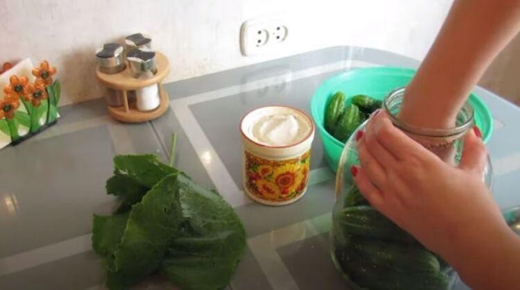 соленые огурцы как бочковые без уксуса под железную крышку для хранения в квартире