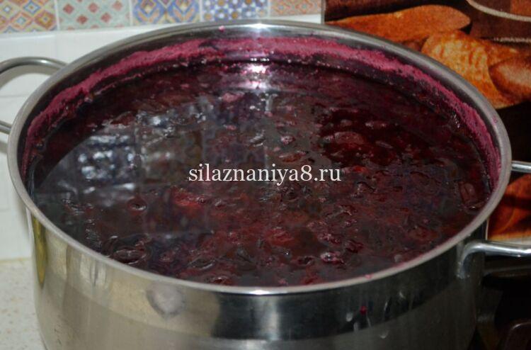 сливовый соус к мясу рецепт на зиму