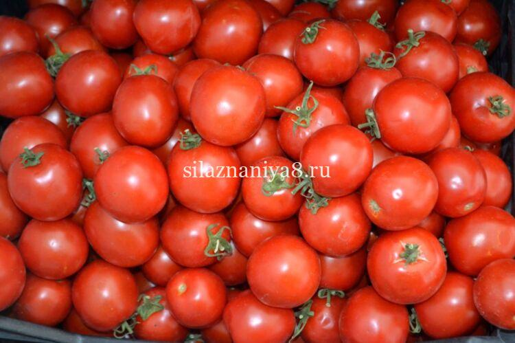 Кетчуп с луком из помидор