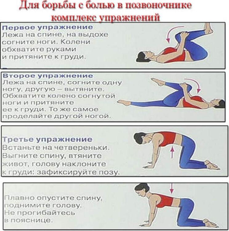 гимнастика для спины