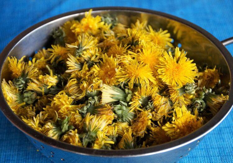 варенье из цветов одуванчика