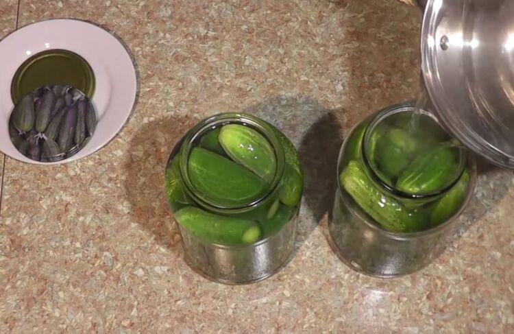 огурцы с лимонной кислотой и водкой