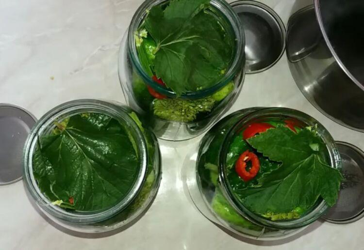 огурцы с лимонной кислотой на зиму в литровых банках без стерилизации