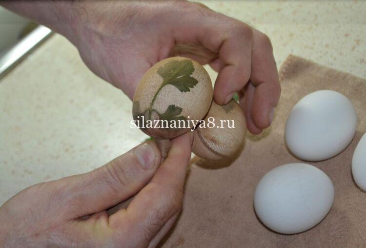 Яйца в каркаде с петрушкой
