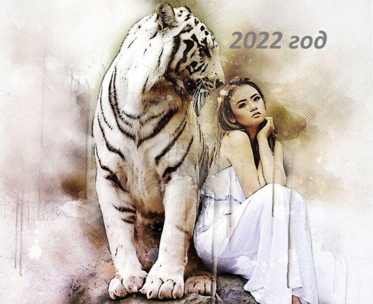 как встречать новый 2022 год тигра