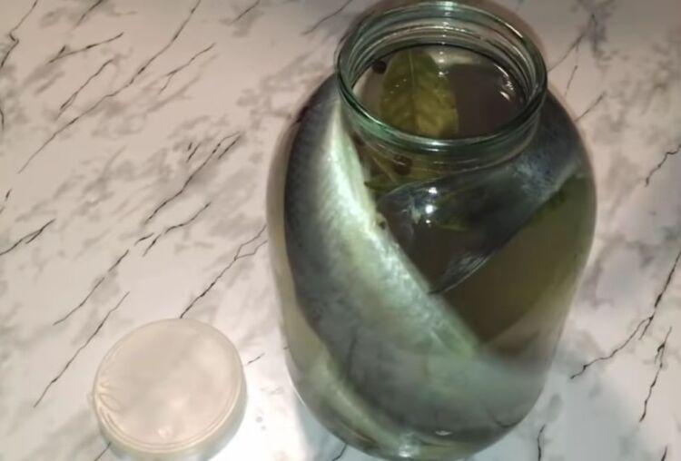 Как засолить селедку в домашних условиях